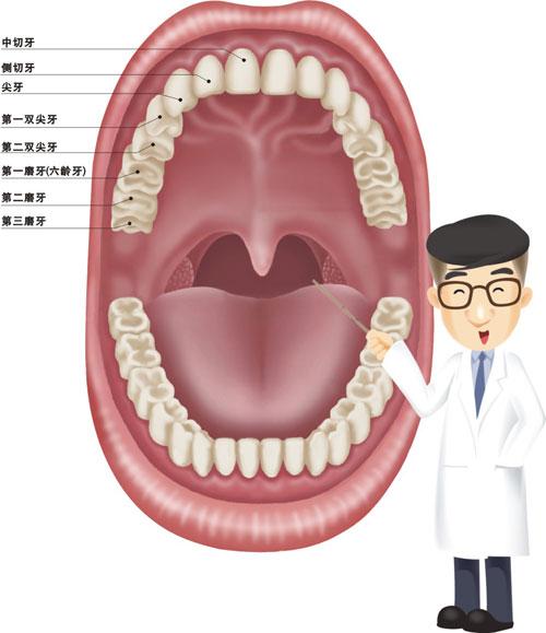 尖牙.jpg